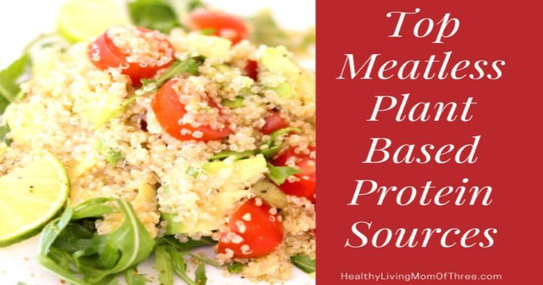 Top Meatless Plant Based Protein Sources